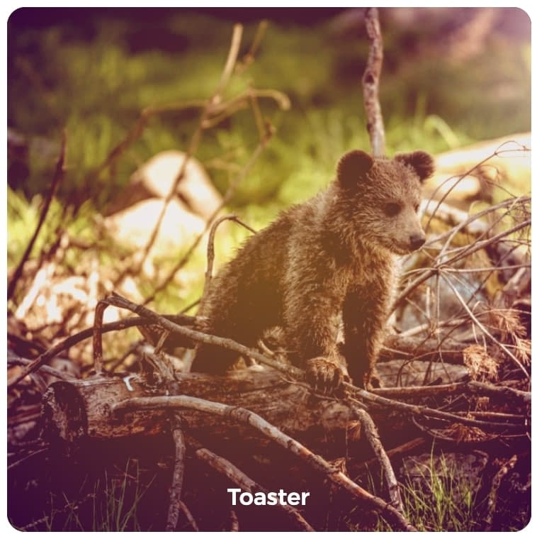 Toaster image filter example