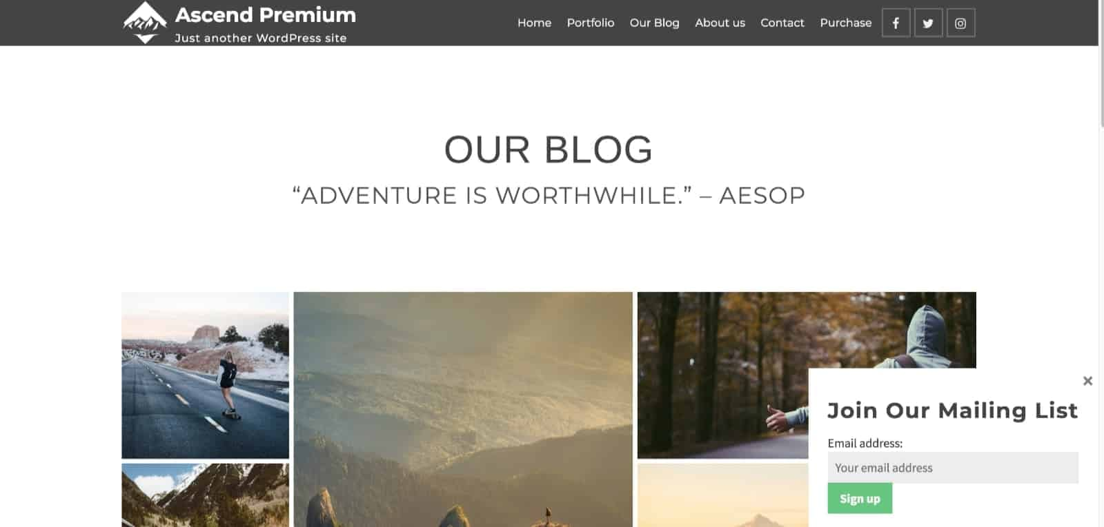 mailchimp-for-wordpress-form-in-popup-kadence-themes