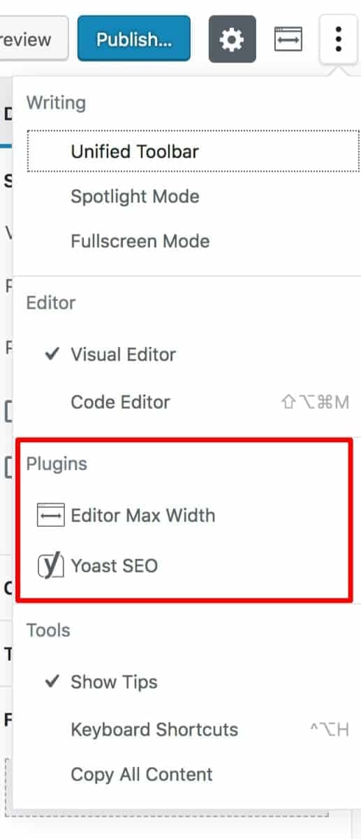 Gutenberg Plugin Options