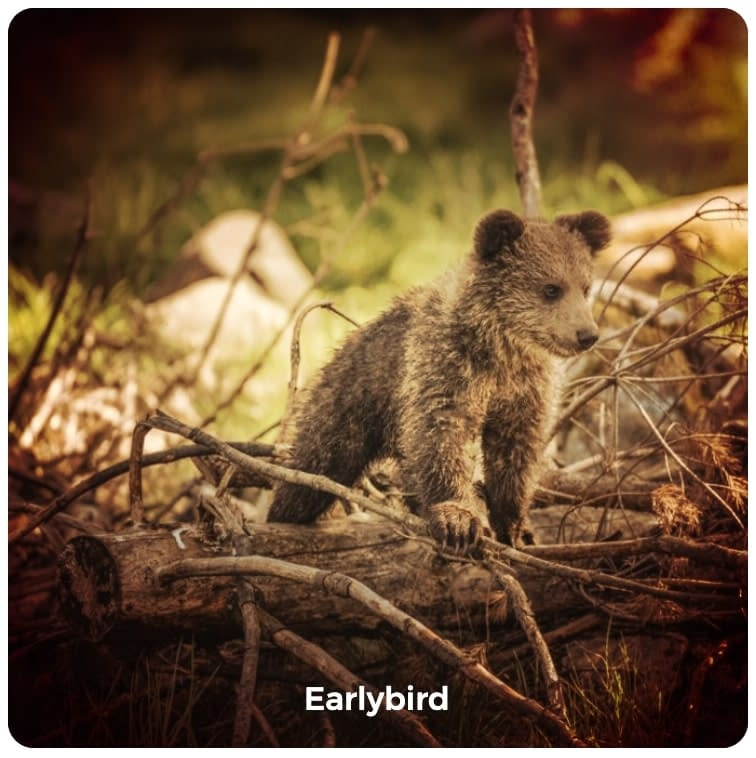 Earlybird image filter example