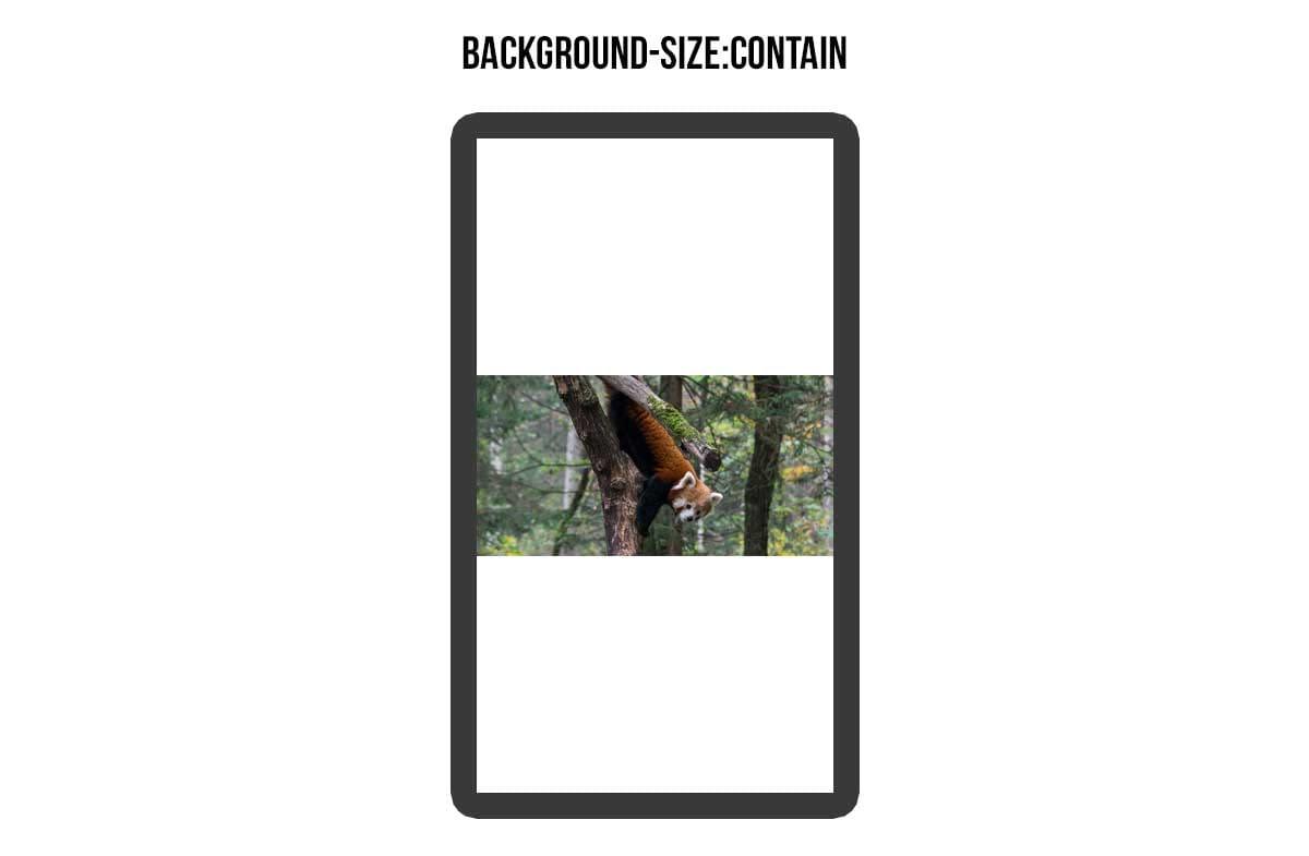 background_tutorial_05