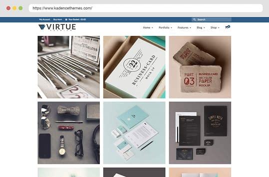 Virtue Premium Portfolio Grid